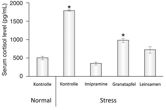 Leinsaat Stress Depression