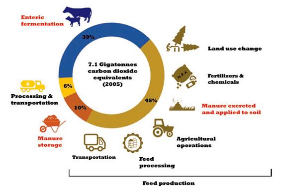 Treibhausgase Tierhaltung